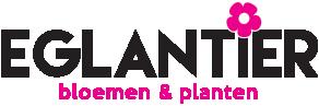 Eglantier Bloemen en Planten